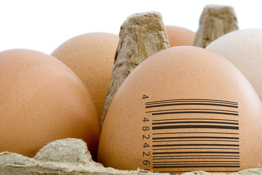 Food Traceability Concept - Barcode on egg